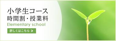 小学生コース 時間割・授業料